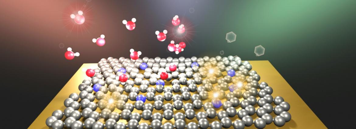 PhD Top Stories: Toxic gas detected and trapped by a carbon network: a new generation of devices?